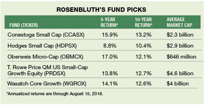 The Market's New Sweet Spot: Small-Cap Growth Funds | Bottom Line Inc