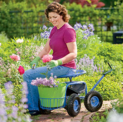 Pain Free Gardening Bottom Line Inc